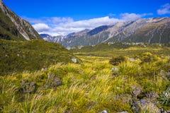 Monti le valli di Tasman, alpe del sud del parco nazionale del cuoco di Aoraki Mt Fotografia Stock Libera da Diritti