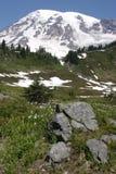 Monti più piovoso immagini stock libere da diritti