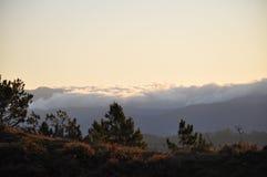 Monti Ulap, il mt Ulap, la montagna di Cordigliera, le catene montuose di Cordigliera, il mare delle nuvole, il itogon, Benguet,  Fotografia Stock