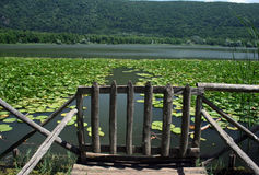 Monticchio lake royalty free stock photo
