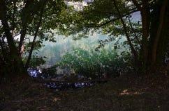 Monticchio Seen auf Berg-Geier Basilikata, Italien Stockbild