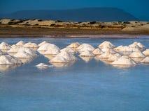 Monticelli del sale nello stagno Fotografia Stock Libera da Diritti