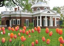 Monticello con los tulipanes en primero plano Foto de archivo libre de regalías
