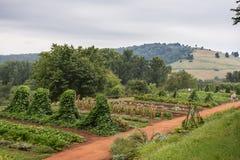 Monticello lantgård royaltyfri bild