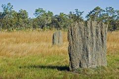 Monticello magnetico della termite, parco nazionale di Litchfield, Australia Immagini Stock