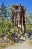 Monticello magnetico della termite, parco nazionale di Litchfield, Australia Immagini Stock Libere da Diritti