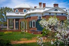 Monticello sidovinkel med det vita skogskornellträdet Royaltyfri Fotografi