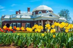 Monticello tulipanu ogród fotografia stock