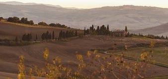 Montichiello - Toscanië/Italië: 29 oktober, 2017: Het winden van Cipres gevoerde weg in Monticchiello stock foto