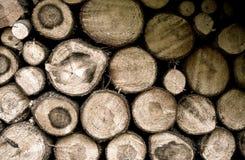 Monticule de bois, bois de charpente, bois de construction de forêt de montagne Photos stock