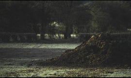 Monticule de fumier en Frosty Field Image libre de droits