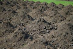 Monticule de sol Photos libres de droits