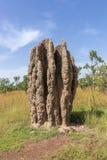Monticule monumental de termite en parc national de Kakadu, Australie du nord, un beau jour ensoleillé photo stock