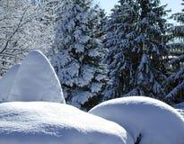 Monticules de neige Photographie stock