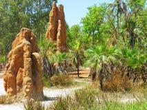 Monticules de termite Photo libre de droits