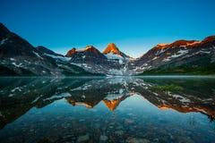 Montierung Assiniboine Reflexion Lizenzfreie Stockfotos