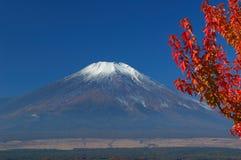 Montierung Fuji im falll Lizenzfreie Stockbilder