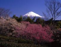 Montierung Fuji IV Stockfotos