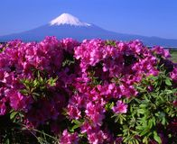 Montierung Fuji L Lizenzfreie Stockbilder