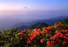 Montierung Fuji XVI Lizenzfreie Stockfotos