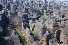 Montierung Roraima Landschaft Stockfoto