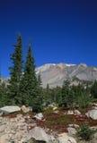 Montierung Shasta, Kalifornien Stockbild