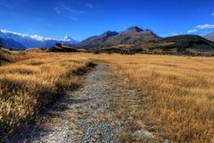 Montierungs-Koch, Neuseeland Stockfoto