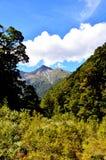 Montierungs-strebender Nationalpark stockfotografie