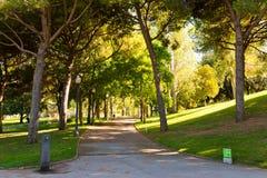 小山的Montjuic公园在巴塞罗那。 图库摄影