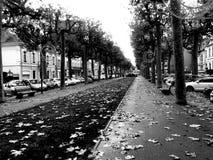Montluçon pedestrian street. City of Montluçon in Allier Auvergne France royalty free stock images