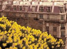 Montmartre Parijs Frankrijk Stock Afbeeldingen
