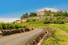 Montmelas castle and vineyard, Beaujolais, France. Montmelas castle and vineyards and the road for access royalty free stock photography