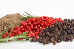 Montones de la pimienta negra y roja con romero Fotografía de archivo