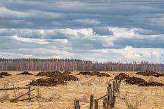 Montones del abono en el campo, fertilizantes de la primavera listos para separarse fotografía de archivo