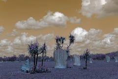 Montones magnéticos de la termita contra un cielo surrealista en sepia Fotos de archivo