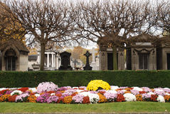 Montparnasse Cemetery. With flowers on the lawn. Location in Paris royalty free stock image