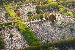 Montparnasse Cemetery, Paris Royalty Free Stock Photos