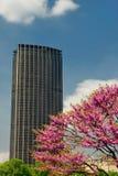 Montparnasse Kontrollturm stockbilder
