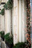 Montra la via, decorata per il Natale fotografia stock