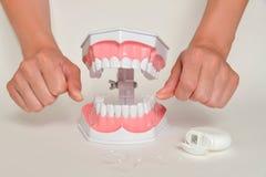 Montrant comment employer la soie, concept de soins dentaires Photographie stock libre de droits