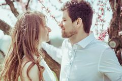 Montre mignonne de couples sur l'un l'autre dans le jardin de floraison de pomme photos stock