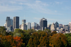 Montreal in Autumn Stock Photography
