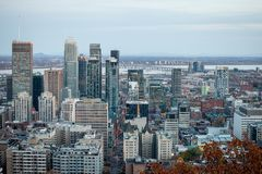 Montreal skyline, with iconic buildings of Downtown and CBD business skyscrapers taken from Mont Royal Hill stock image