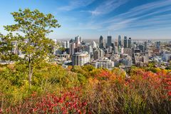 Montreal Skyline in Autumn royalty free stock images