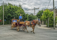 Montreal Carriage Ride Royalty Free Stock Photo