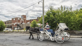 Montreal Carriage Ride. Horse drawn carriage in Montreal, Quebec, Canada Royalty Free Stock Image