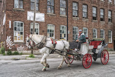 Montreal Carriage Ride. Horse drawn carriage in Montreal, Quebec, Canada Stock Photos