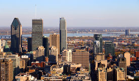 Montreal City Skyscrapers Stock Images