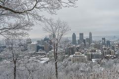 Montreal de stad in in sneeuw Stock Afbeeldingen
