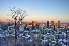 Montreal Downtown in Winter royalty free stock photography